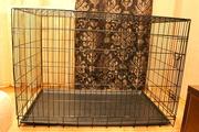 Клетка для собак в аренду