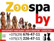 Интернет-магазин зоотоваров ZooSPA
